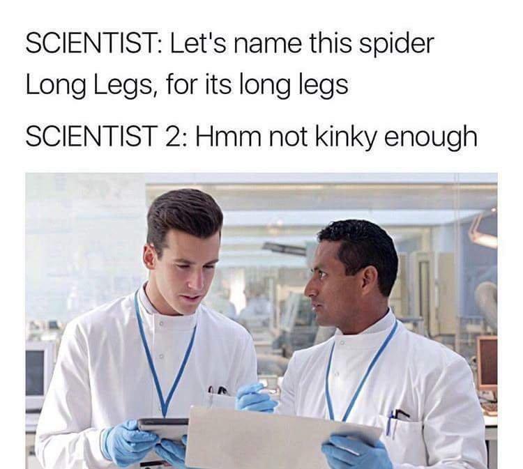 Not kinky enough