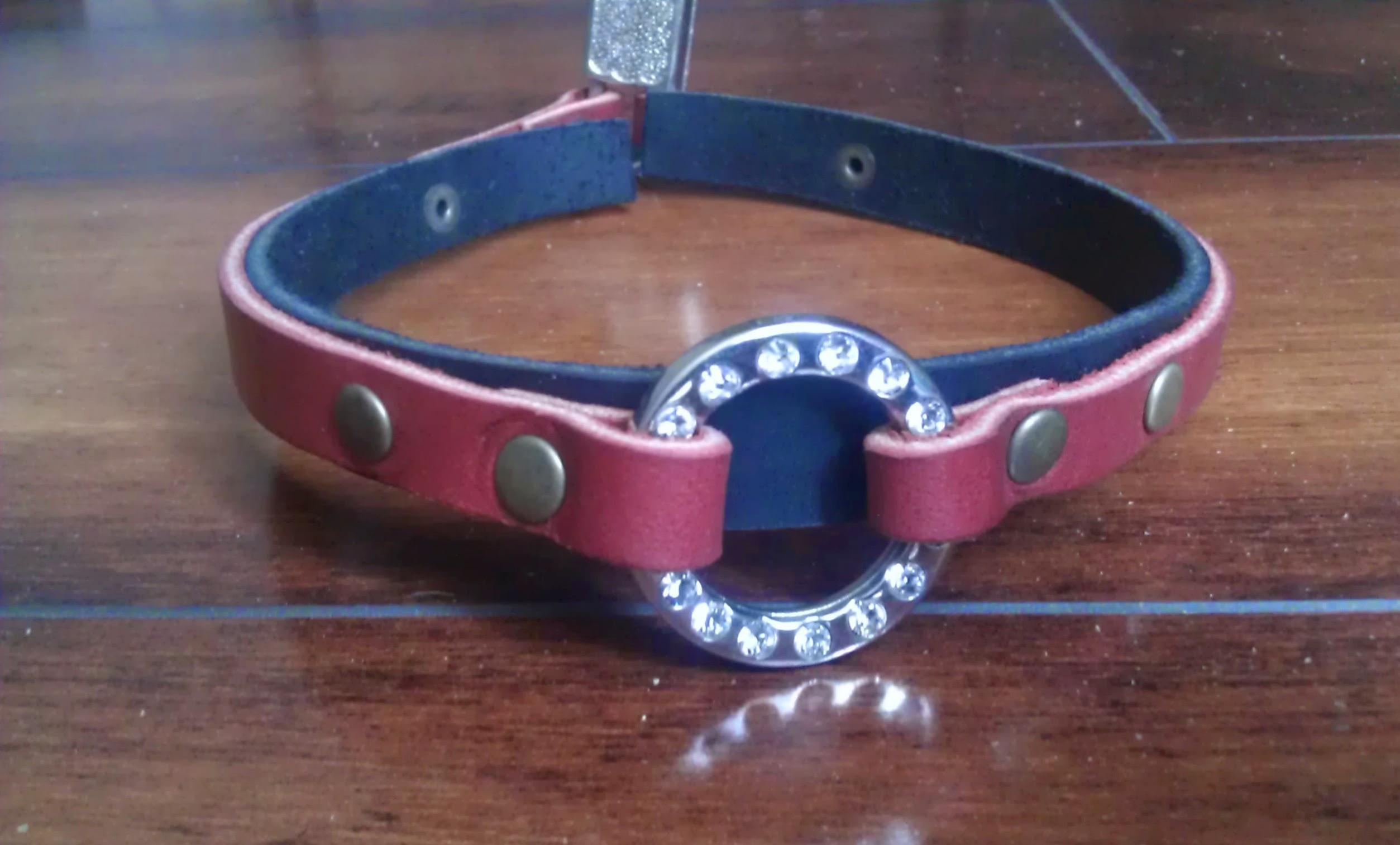 First collar i ever made.
